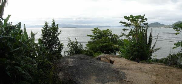 Terreno, Cacupé, Florianópolis (TE0219) - Foto 13