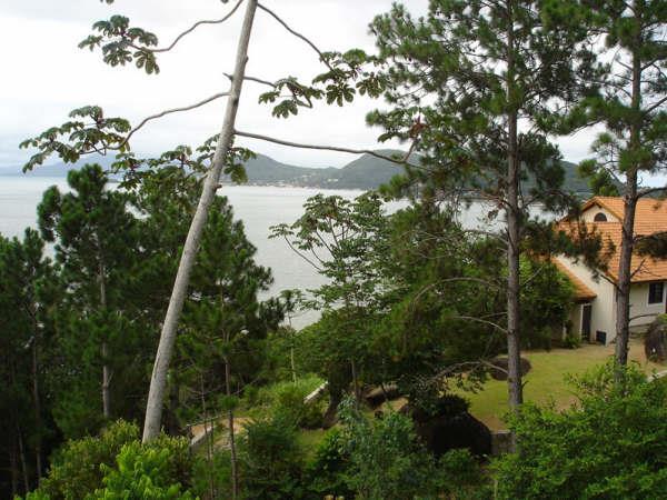 Terreno, Cacupé, Florianópolis (TE0219) - Foto 6
