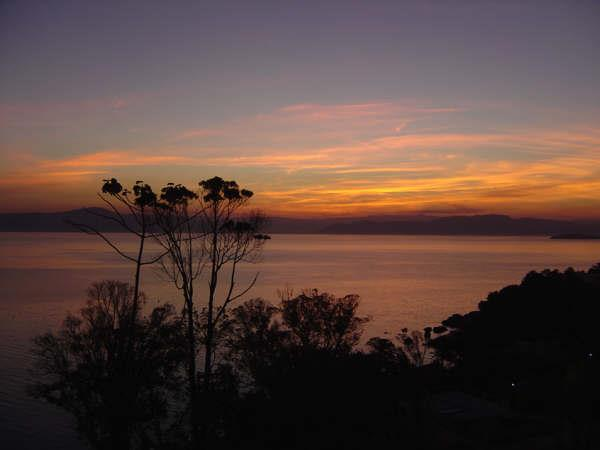 Terreno, Cacupé, Florianópolis (TE0219) - Foto 4
