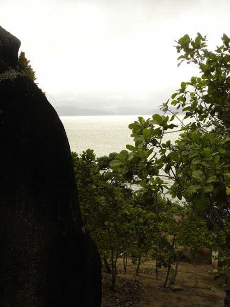 Terreno, Cacupé, Florianópolis (TE0219) - Foto 8