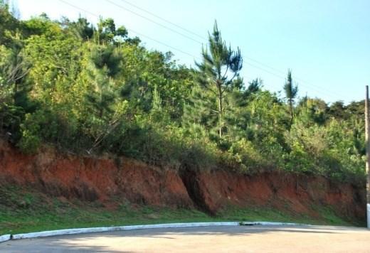 Terreno, Itacorubi, Florianópolis (TE0005) - Foto 10