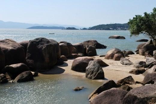 Terreno, Sambaqui, Florianópolis (TE0060) - Foto 2