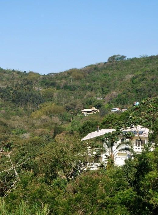 Terreno, Itacorubi, Florianópolis (TE0005) - Foto 16