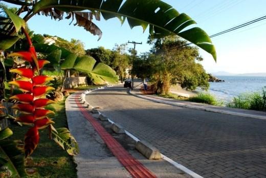 Terreno, Sambaqui, Florianópolis (TE0060) - Foto 8