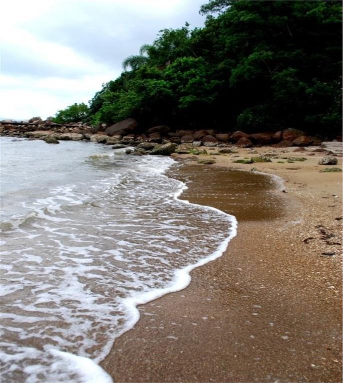 Terreno, Sambaqui, Florianópolis (TE0059) - Foto 16