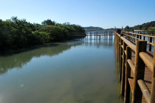 Terreno, Cachoeira do Bom Jesus, Florianópolis (TE0086) - Foto 19