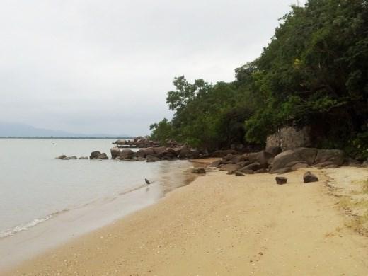 Terreno, Sambaqui, Florianópolis (TE0060) - Foto 11