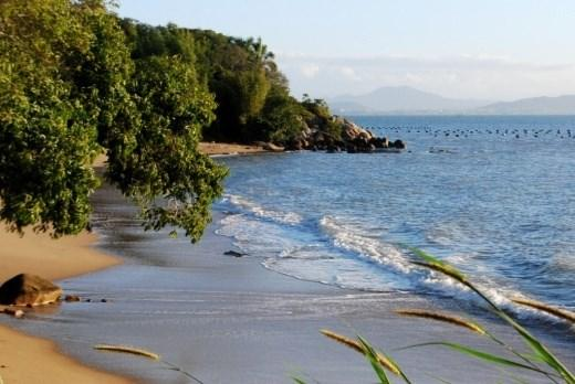 Terreno, Sambaqui, Florianópolis (TE0060) - Foto 20