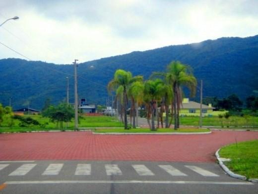 Terreno, Rio Vermelho, Florianópolis (TE0065) - Foto 4
