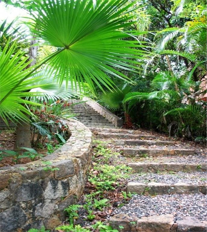 Terreno, Sambaqui, Florianópolis (TE0059) - Foto 7