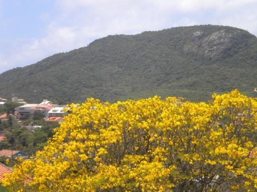 Pousada, Santinho, Florianópolis (PO0001) - Foto 3