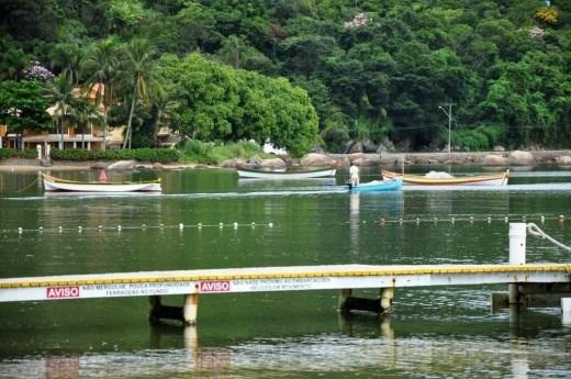 Terreno, Sambaqui, Florianópolis (TE0060) - Foto 4