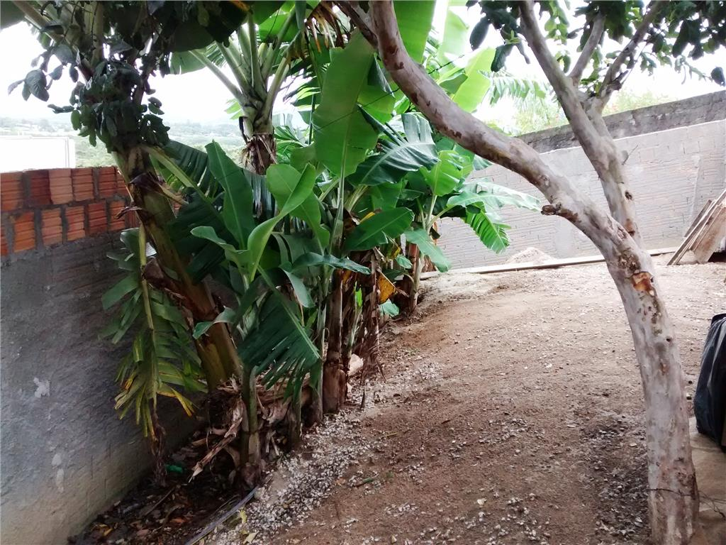 Terreno, Vargem Pequena, Florianópolis (TE0160) - Foto 9