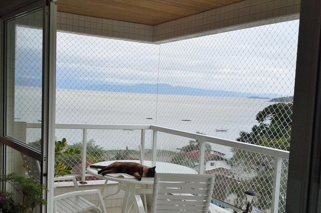 Apto 3 Dorm, João Paulo, Florianópolis (AP0151) - Foto 8