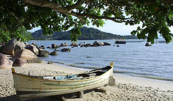 Terreno, Sambaqui, Florianópolis (TE0144) - Foto 19