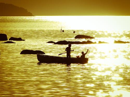 Terreno, Sambaqui, Florianópolis (TE0144) - Foto 7