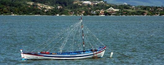 Terreno, Sambaqui, Florianópolis (TE0144) - Foto 6