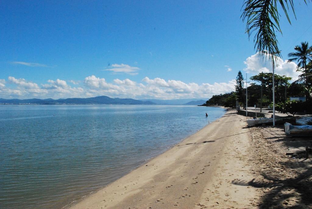 Terreno, Cacupé, Florianópolis (TE0147) - Foto 4