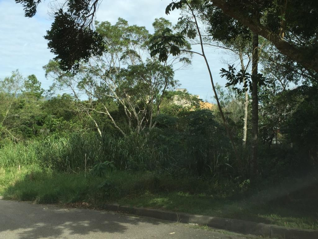 Terreno, João Paulo, Florianópolis (TE0198) - Foto 8