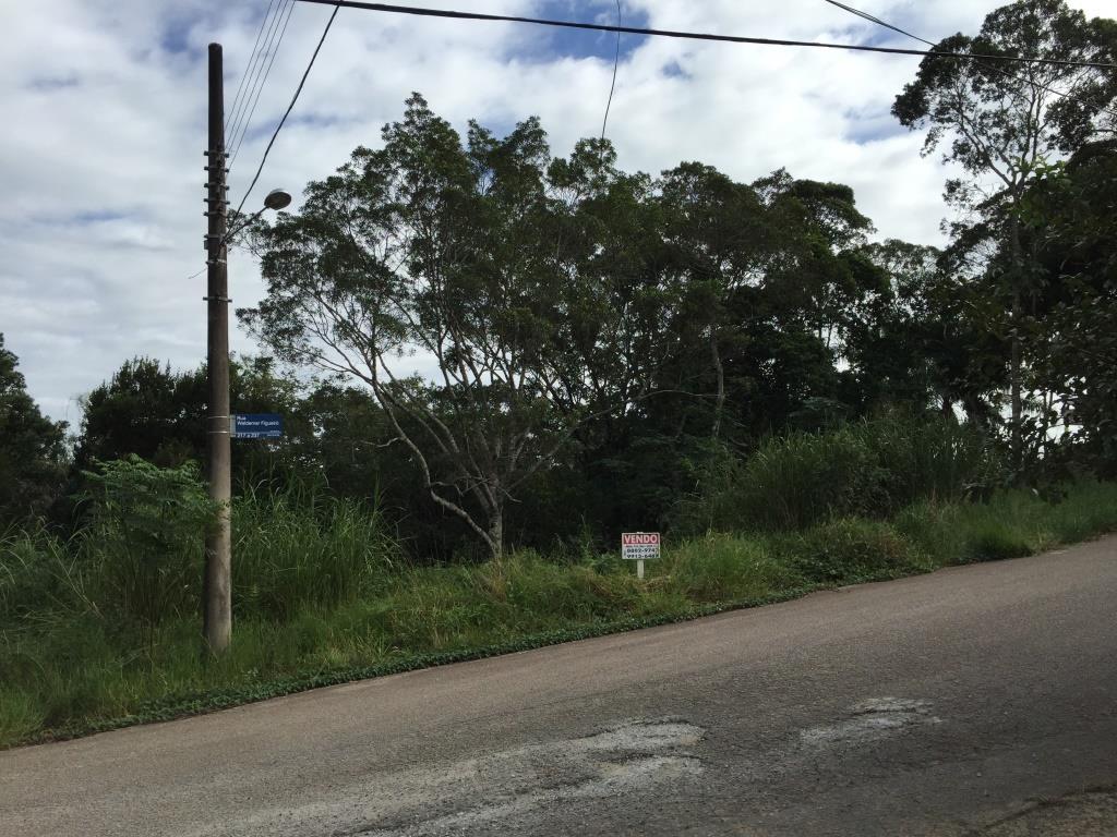 Terreno, João Paulo, Florianópolis (TE0198) - Foto 3