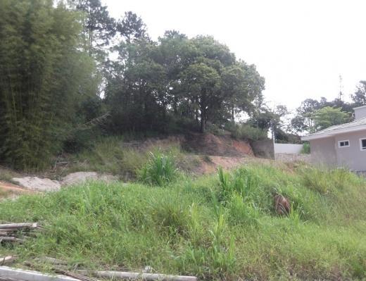 Terreno, Córrego Grande, Florianópolis (TE0021) - Foto 8