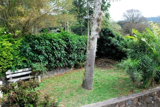 Casa 2 Dorm, Lagoa da Conceição, Florianópolis (CA0037) - Foto 9