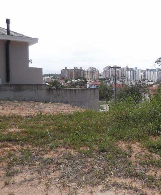 Terreno, Córrego Grande, Florianópolis (TE0021) - Foto 6