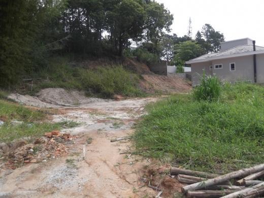 Terreno, Córrego Grande, Florianópolis (TE0021) - Foto 7