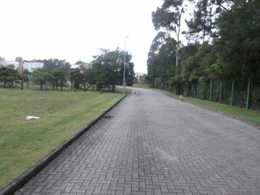 Terreno, Campeche, Florianópolis (TE0042) - Foto 10