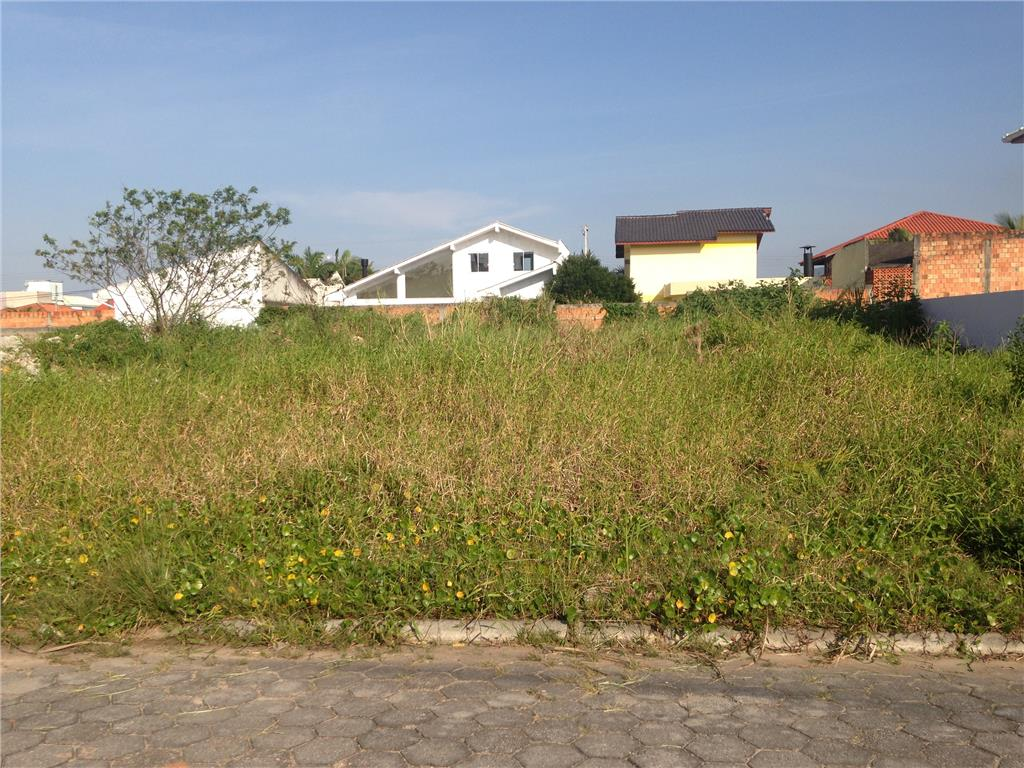 Terreno, Carianos, Florianópolis (TE0197) - Foto 3