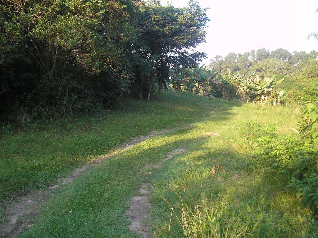 Terreno, Ratones, Florianópolis (AR0003) - Foto 5