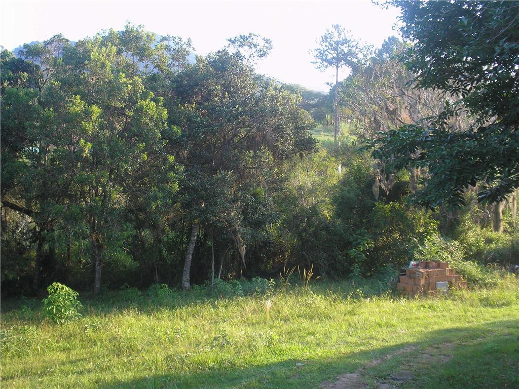 Terreno, Ratones, Florianópolis (AR0003) - Foto 7