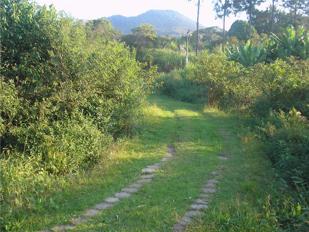 Terreno, Ratones, Florianópolis (AR0003) - Foto 8
