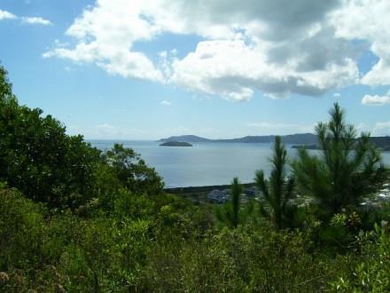 Terreno, Jurerê, Florianópolis (TE0187) - Foto 9
