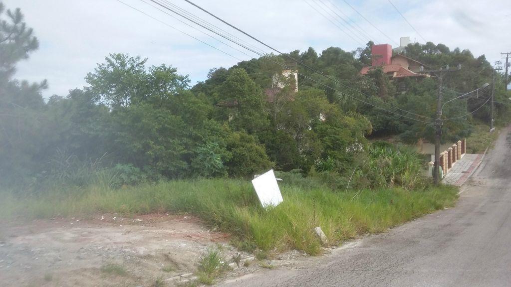Terreno, João Paulo, Florianópolis (TE0179) - Foto 2