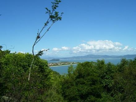 Terreno, Jurerê, Florianópolis (TE0187) - Foto 8