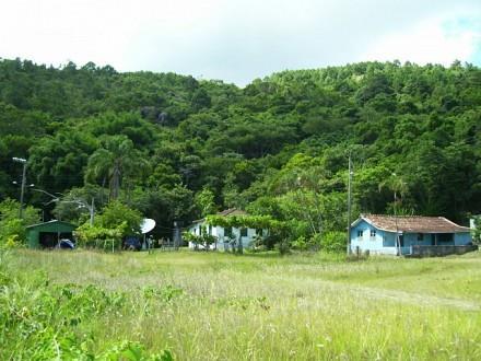 Terreno, Jurerê, Florianópolis (TE0187) - Foto 3