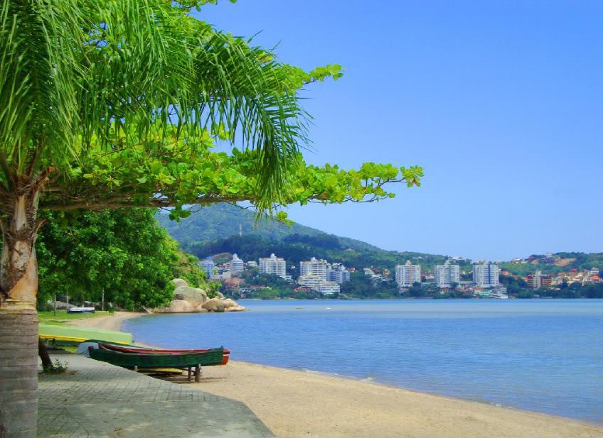 Terreno, Cacupé, Florianópolis (TE0182) - Foto 11