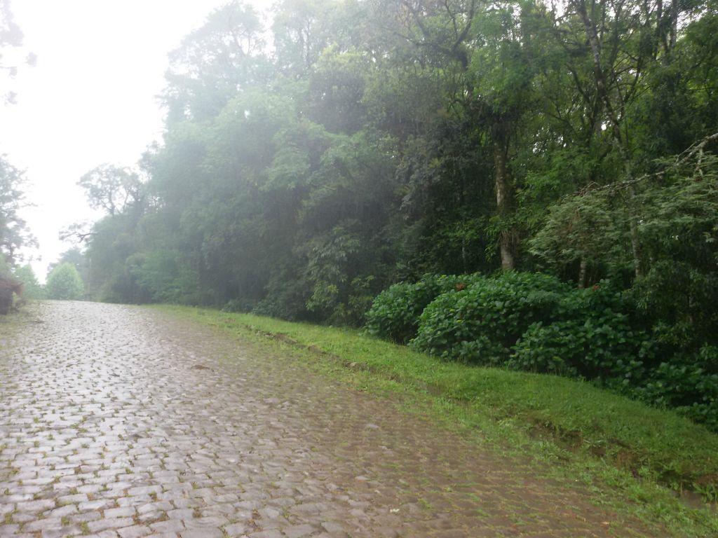 Terreno em Jardim Dos Pinheiros Ii, Canela - RS