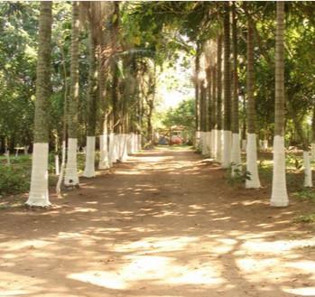 Sítio à venda em Belém Novo, Porto Alegre - RS