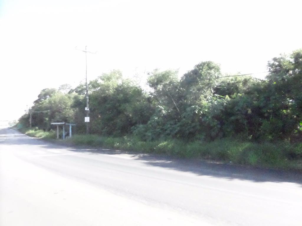 Área à venda em Zona Rural, Nova Santa Rita - RS