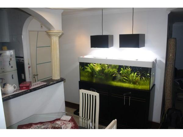 Apartamento de 2 dormitórios em Itaquera, São Paulo - SP