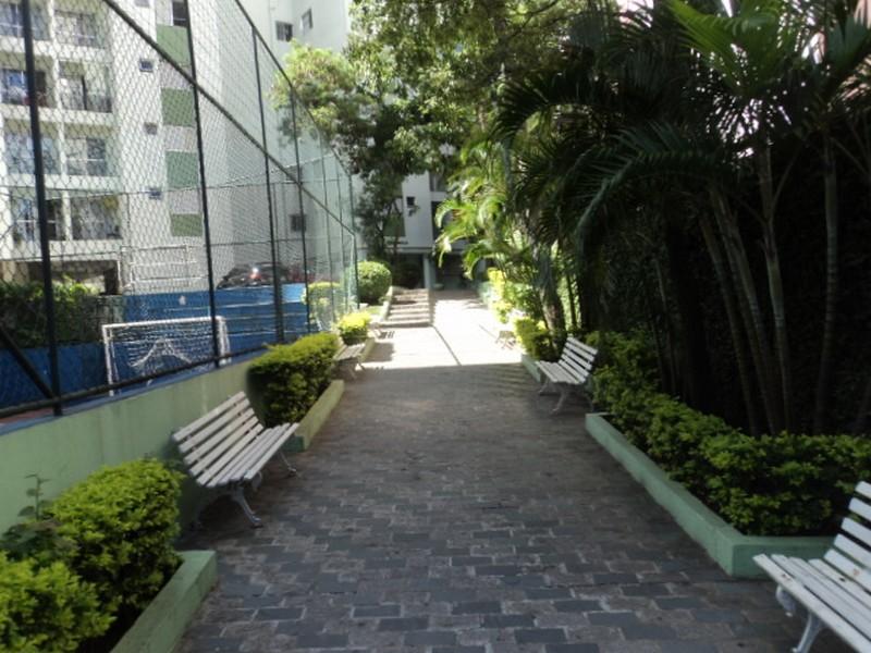 Apartamento de 3 dormitórios em Parque Tomas Saraiva, São Paulo - SP
