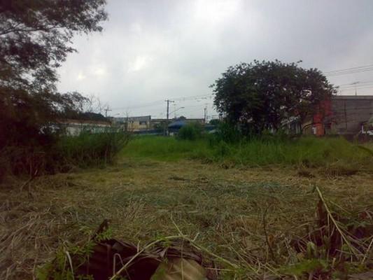Terreno à venda em Vila Carmosina, São Paulo - SP