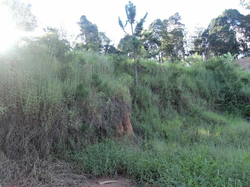 Terreno à venda em Arujá, Arujá - SP