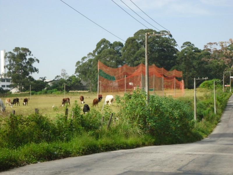 Área à venda em Itaquera, São Paulo - SP