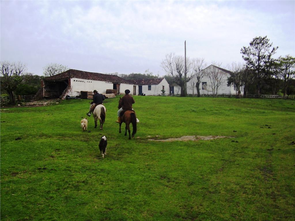Fazenda em Centro, Bagé - RS
