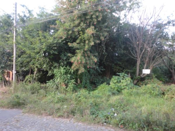 Terreno à venda em Nossa Senhora Do Rosário, Santa Maria - RS