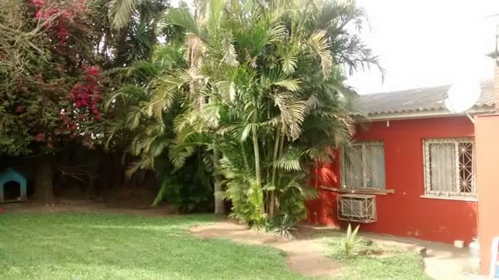 Casa de 3 dormitórios em Vila Nova, Camaquã - RS