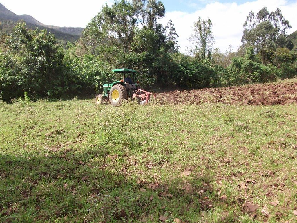 Terreno à venda em Centro, Itati - RS